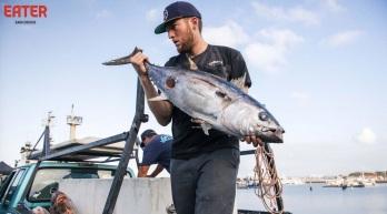 Tuna Harbor
